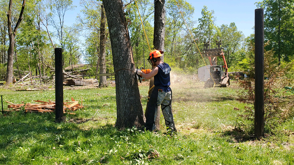 Trenton Maddox, a Homeland Security and Emergency Services Management major at the Anderson University School of Public Service and Administration, cuts down a damaged tree with a chainsaw during a disaster relief project in Nashville, Tennessee.
